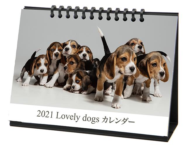 卓上カレンダー(子犬)画像
